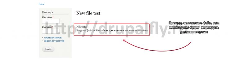 Прежде, чем скачать файл, вам необходимо будет подождать указанное время