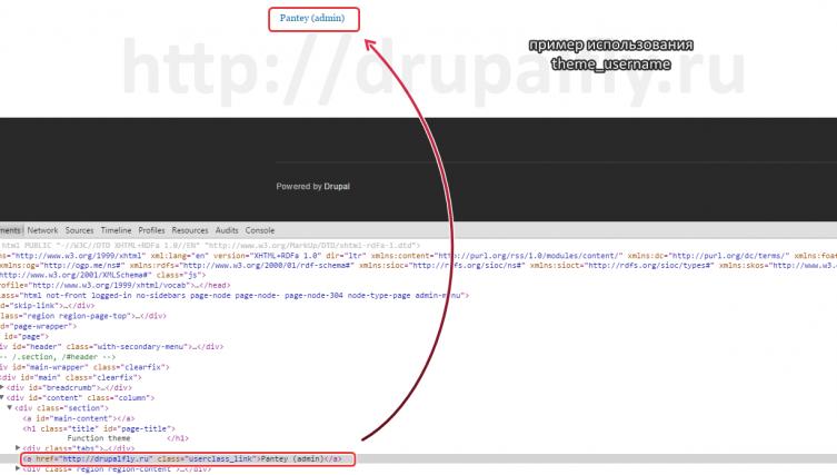 Пример использования theme_username